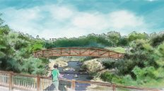 What's Next for Shoal Creek? 12 Improvements to Expect