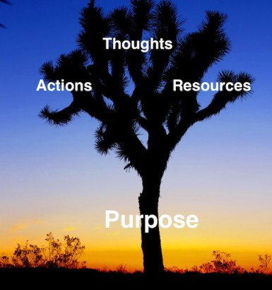 "Due to ""Bigger""-Picture Thinking, your purpose should be the cause of your actions, thoughts, and resulting resources."