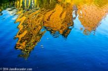 Austin Upsidedown by Jann Alexander ©2014