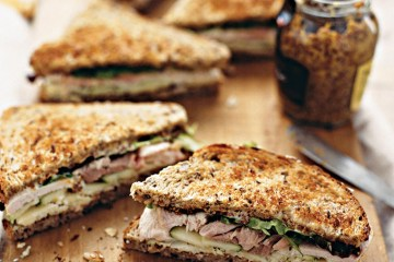 Forthright leftover-turkey-sandwich recipe