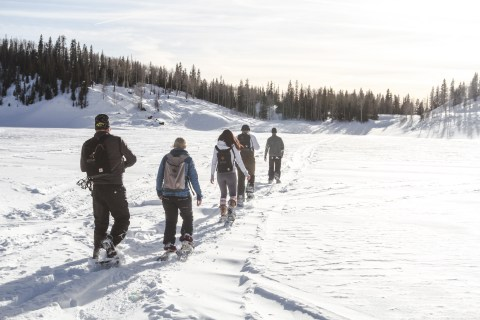 Utah Snow shoe tour