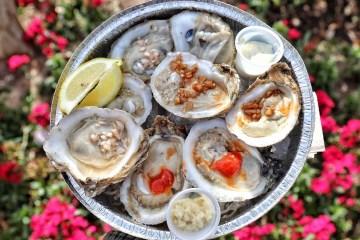 oyster fest 2019