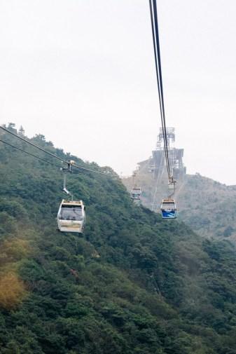 The gondolas
