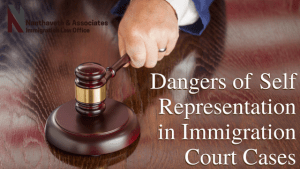 Dangers of Self Representation in Immigration Court Cases
