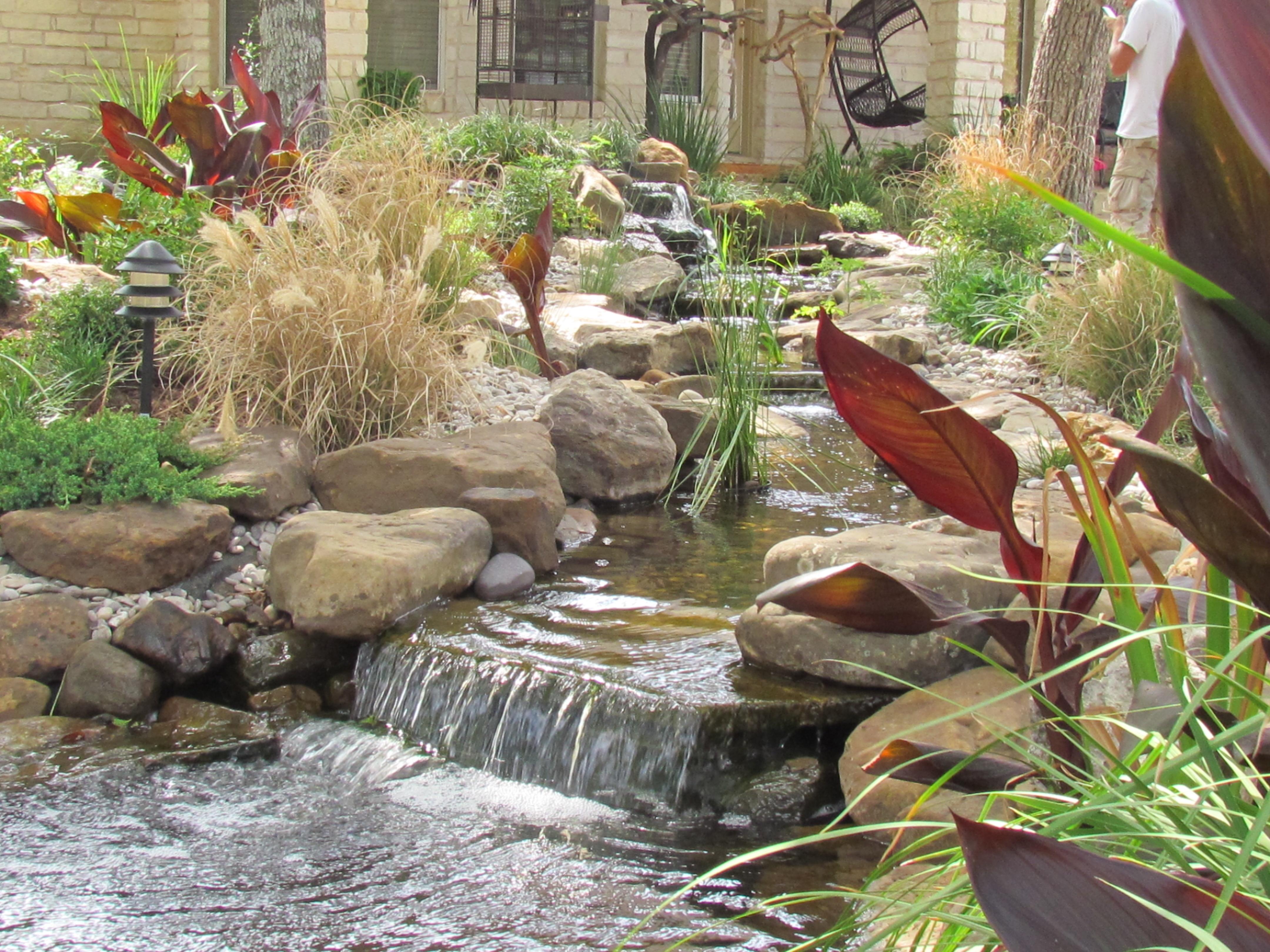 Backyard Pond Installation