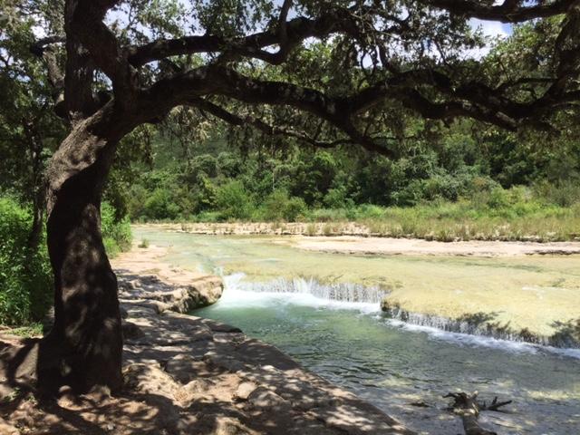 Bull Creek District Park Park Improvements Parks And