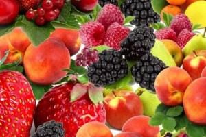 澳洲跨州攜帶水果遭罰款|澳洲留學網