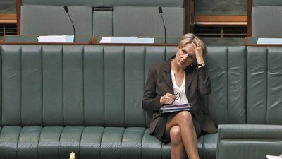 Tanya Plibersek Leg Distraction