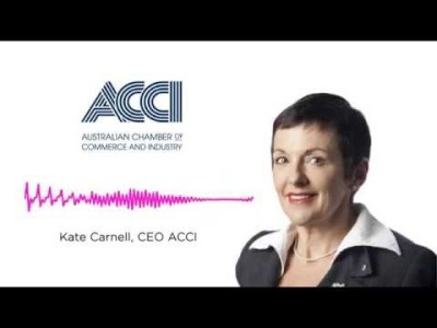 ACCI chief executive Kate Carnell