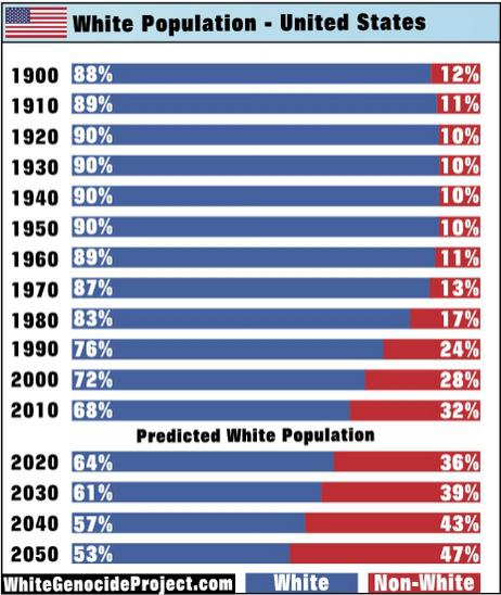 White Minority in America by 2043