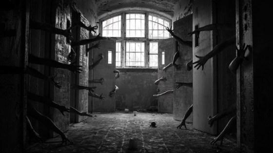 Plibersek Asylum