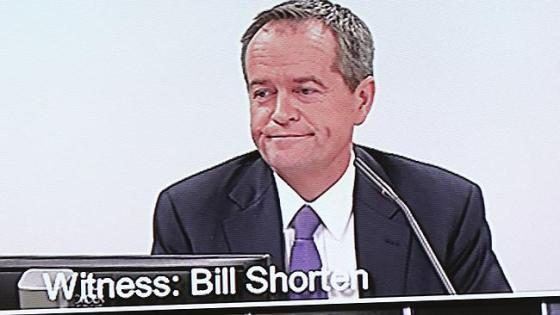Witness Bill Shorten