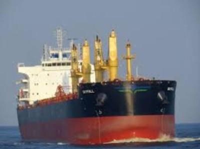 Skyfall bulk carrier (IMO 9724752)