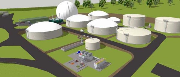bio digester. meateng_edited-1