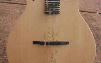 Tacoma M1E Mandolin
