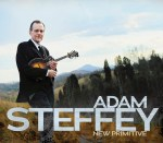 Adam Steffey's New Primative