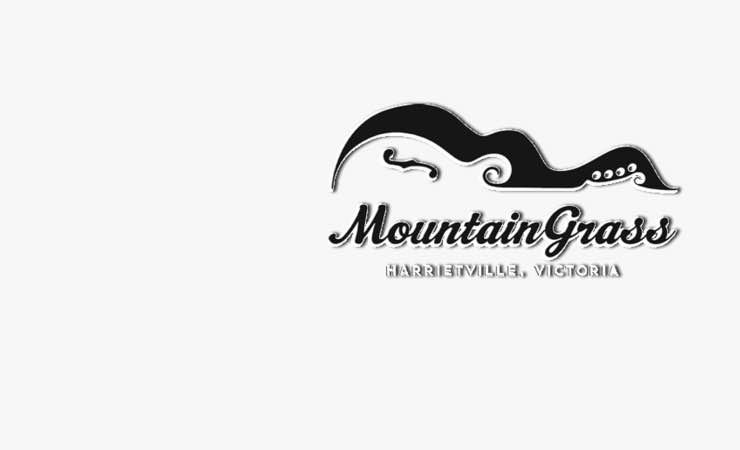 Performer Applications Now Open For MountainGrass 2016