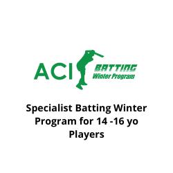 Batting Winter Program Tile_1