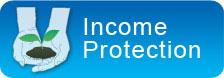 Australian life insurance