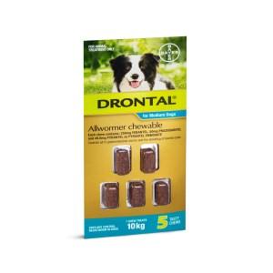 Drontal 10kg 5 chews