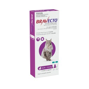 Bravecto large cat spot-on