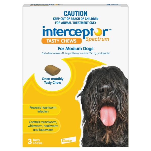 Interceptor medium Dog 3 Pack Yellow