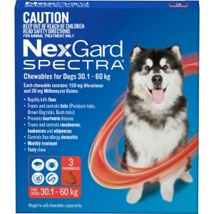 NexGard Spectra XLarge Dog 3 Pack