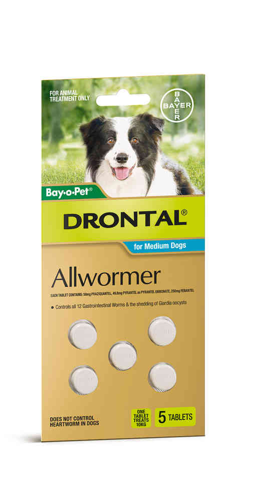 Drontal Medium Dog