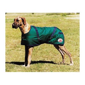 Thermo Master Dog Coat Hunter Green & Navy