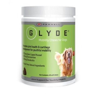 Glyde Mobility Chews 60 pack