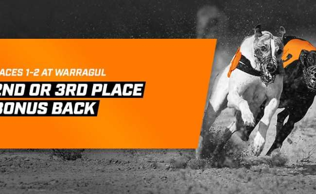Neds Bookmaker Bonus Bet Back On Warragul Greyhounds