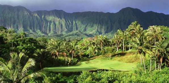Hawaii Golf 595