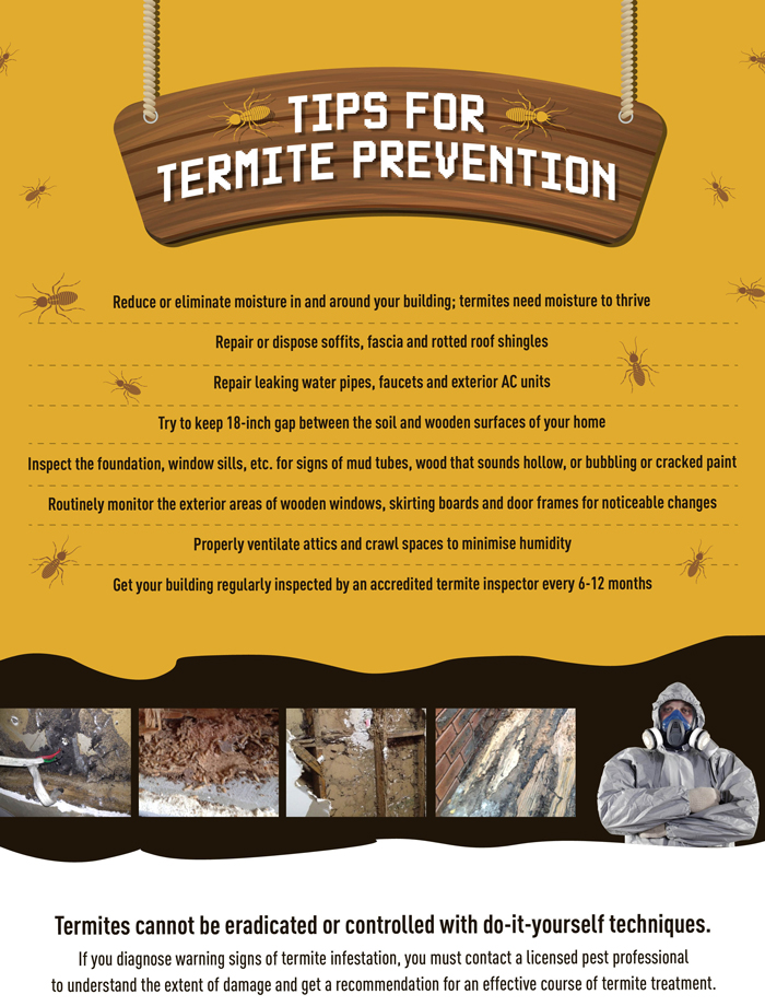 Tips for Termite Prevention