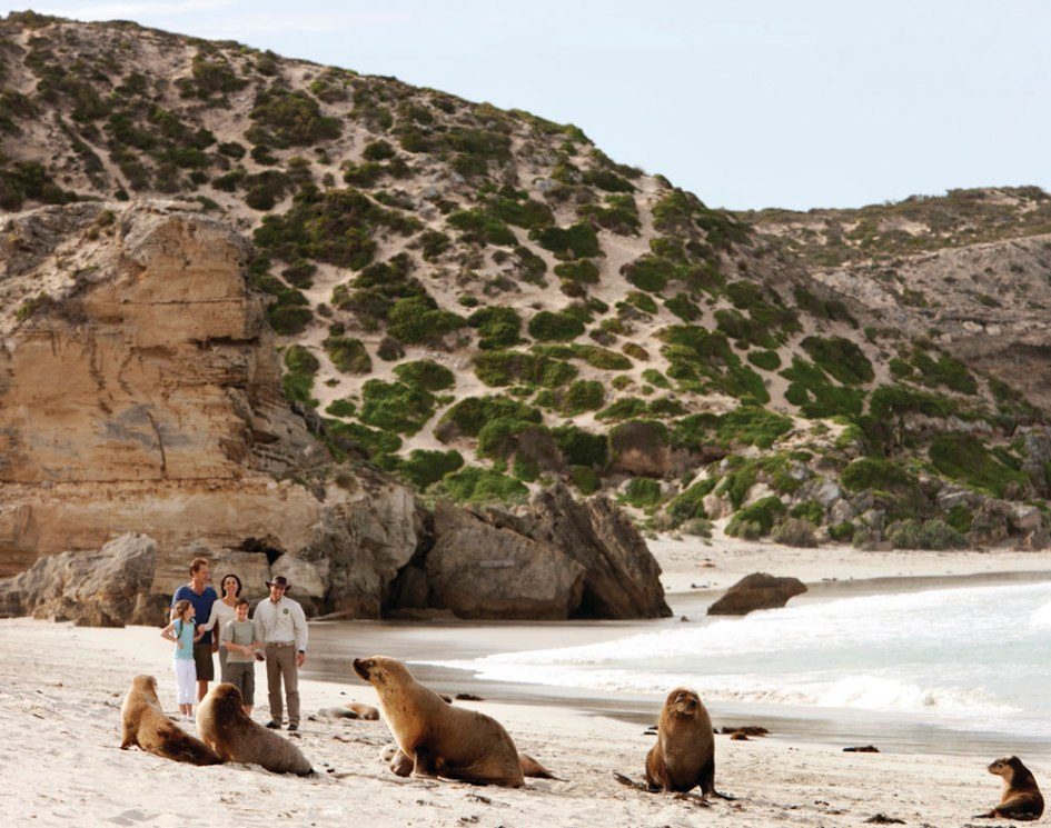 South Australia | Australia One - Inbound Tour Operator