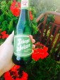 Elderberry Soda and Beer