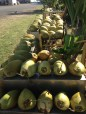 Road stands with fresh coconuts are common and everywhere on the islands.