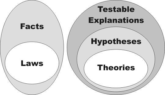 theory and law venn diagram