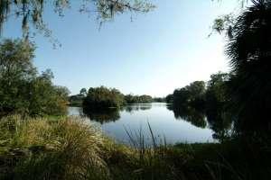 Lake near Reynolds Road