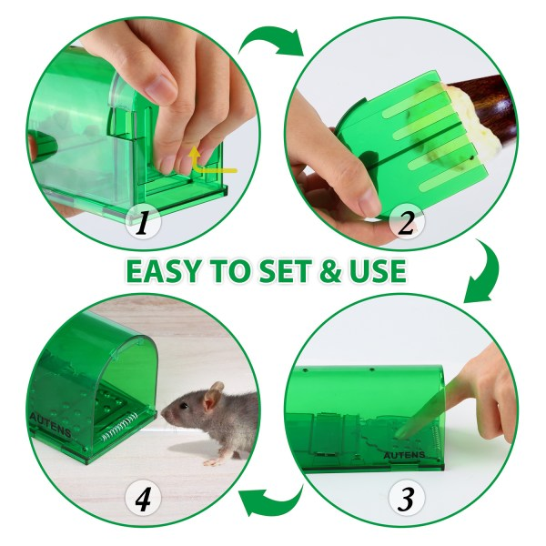 Humane Mouse Trap, Live Catch and Release, No Kill, Best for Small Rats, Mice, Hamsters, Mole - 2 Pack Green 5