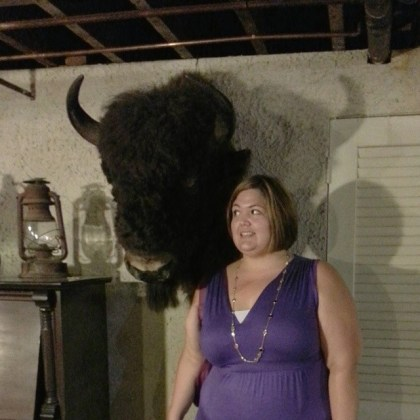 Run in with a bison