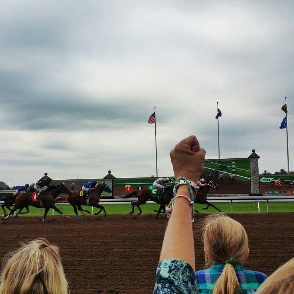Horses at Keeneland