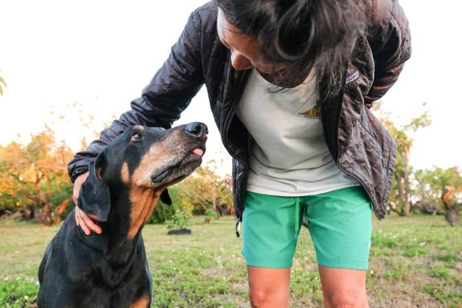Petting a dog on a farm.
