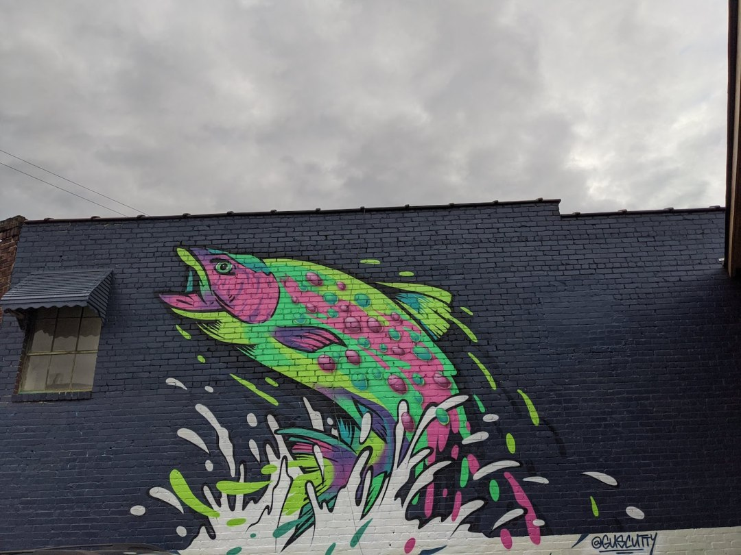 Best Instagram Spots in Asheville: West Asheville Fish Mural by Gus Cutty