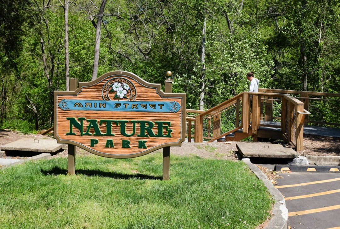 The Main Street Nature Park, one of the best things to do in Weaverville, NC.