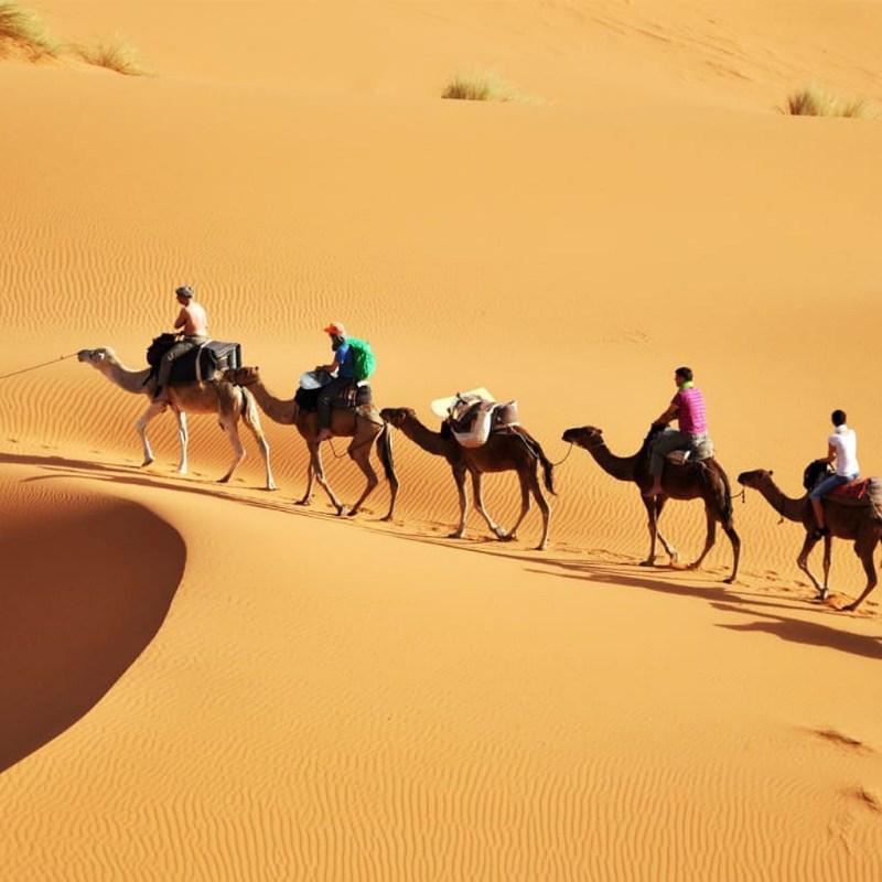camel trek in Merzouga Desert
