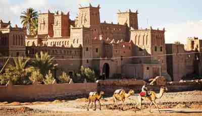 10 day tour fes to Marrakech