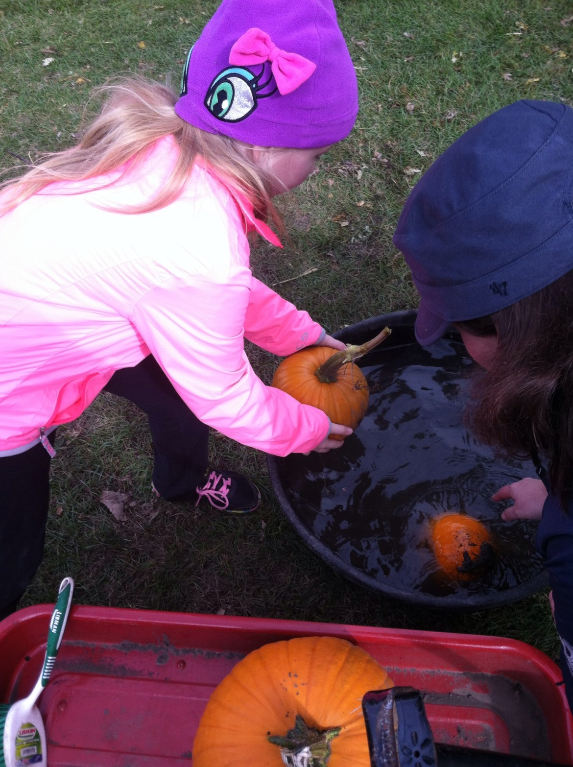 Cleaning pumpkins