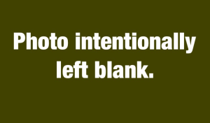 photo intentionally left blank