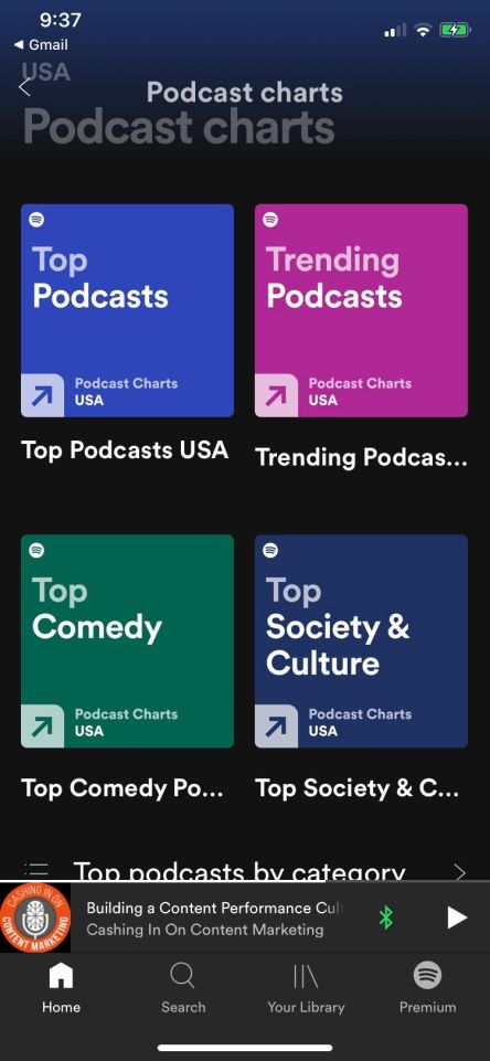 Spotify top charts