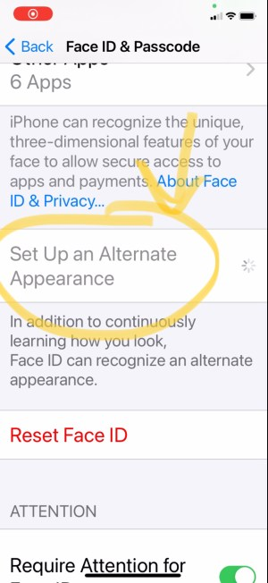 Unlock iphone with alternate face id
